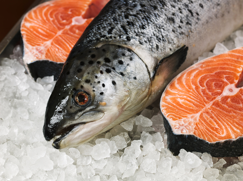 GM Salmon Rejected by Whole Foods, Trader Joe's, Aldi and other food retailers
