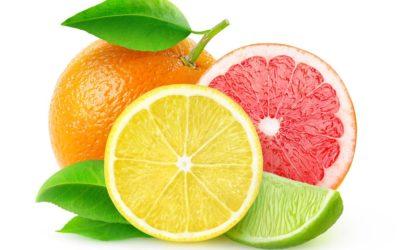 My Citrus Peel Tonic Water
